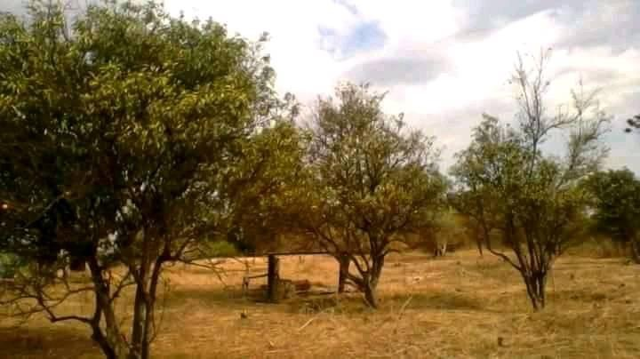 10.6 Hectares Of Farm For Sale In Monze