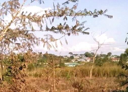 1500 Sqm Of Land For Sale In Misundu Ndola