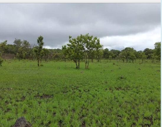 Chisamba