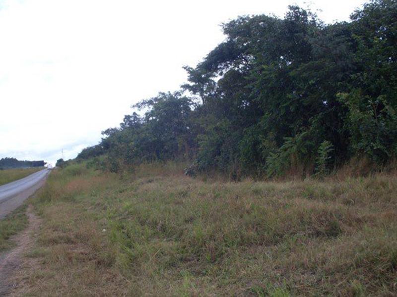 Maposa Kitwe